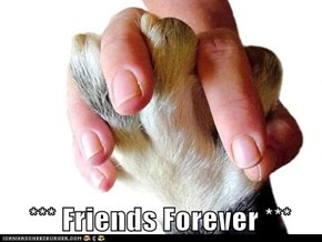 *** Friends Forever ***