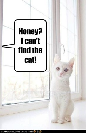 Honey? I can't find the cat!