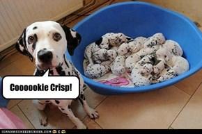 Coooookie Crisp!