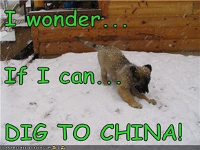 I wonder... If I can... DIG TO CHINA!