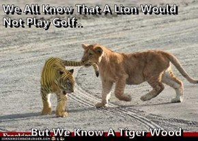 We All Know That A Lion Would Not Play Golf..        ...But We Know A Tiger Wood