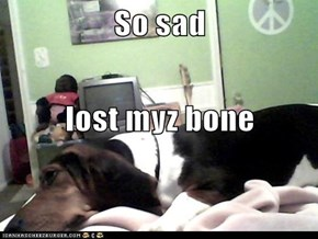 So sad lost myz bone