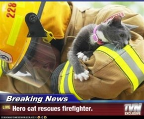 Breaking News - Hero cat rescues firefighter.