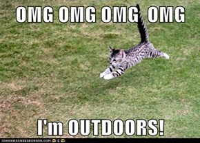 OMG OMG OMG  OMG  I'm OUTDOORS!