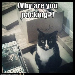 Why are you packing?!