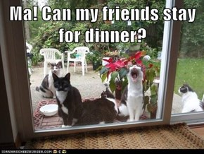 Ma! Can my friends stay for dinner?