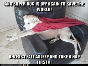 AND SUPER DOG IS OFF AGAIN TO SAVE THE WORLD!  UNLESS I FALL ASLEEP AND TAKE A NAP FIRST!!!