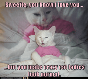 Sweetie, you know I love you...  ...but you make crazy cat ladies look normal.