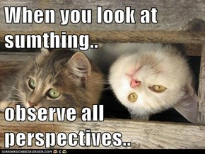 When you look at sumthing..  observe all perspectives..