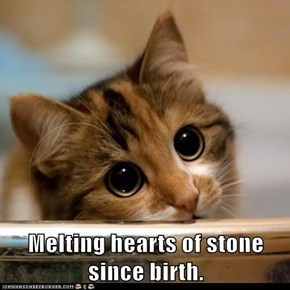 Melting hearts of stone since birth.