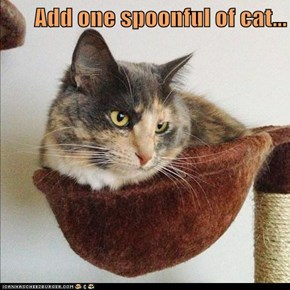 Add one spoonful of cat...