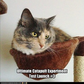 Ultimate Catapult Experiment Test Launch #3
