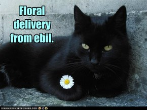 Floral delivery from ebil.
