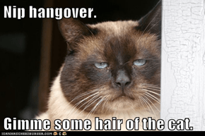 Nip hangover.  Gimme some hair of the cat.