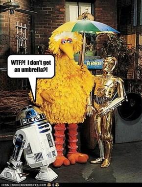 WTF?!  I don't get an umbrella?!