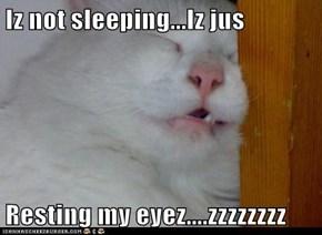 Iz not sleeping...Iz jus  Resting my eyez....zzzzzzzz