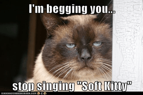 "I'm begging you...  stop singing ""Soft Kitty"""
