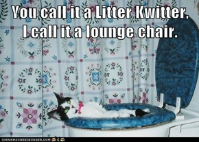 You call it a Litter Kwitter,    I call it a lounge chair.