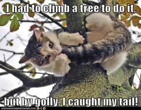 I had to climb a tree to do it,  but by golly, I caught my tail!