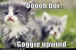 Ooooh boi...            Goggie upwind