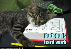 Sudoku is hard work