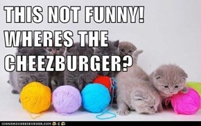 THIS NOT FUNNY! WHERES THE CHEEZBURGER?