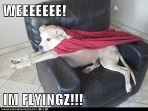 WEEEEEEE!  IM FLYINGZ!!!