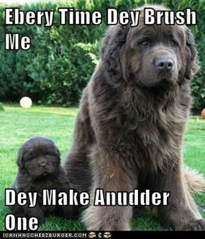 Ebery Time Dey Brush Me   Dey Make Anudder One