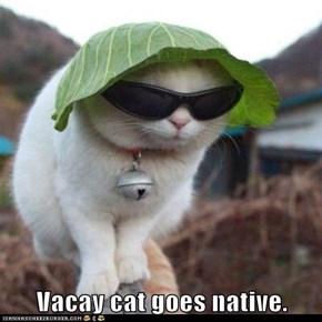 Vacay cat goes native.