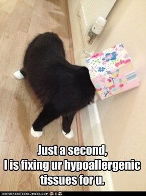 Just a second,  I is fixing ur hypoallergenic tissues for u.