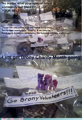 Go Brony Charity Month!