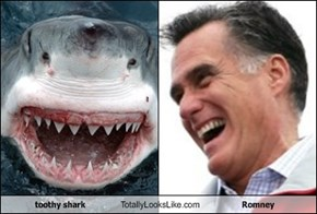 toothy shark Totally Looks Like Romney