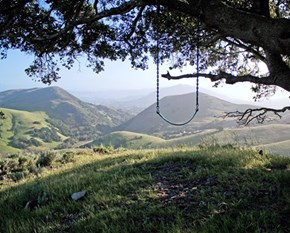 Have a Swing at the Poly Canyon, San Luis Obispo