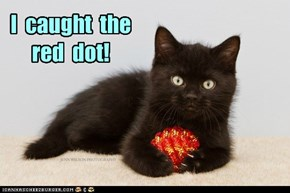 I  caught  the  red  dot!