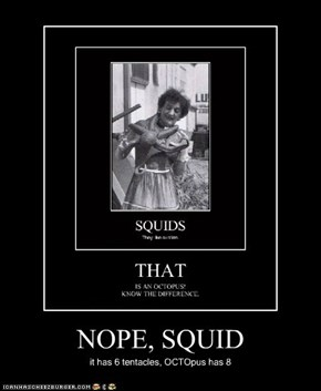 NOPE, SQUID