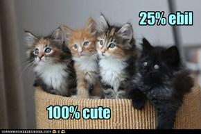 We're all cute here.