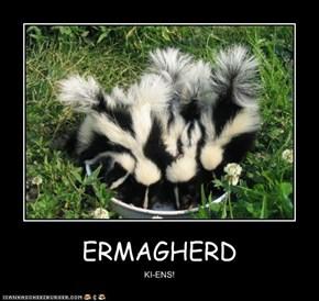 ERMAGHERD