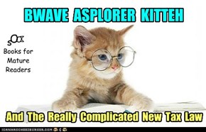 A new BWAVE ASPLORER KITTEH book in the series for Older Adult Readers!