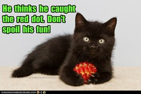 He  thinks  he  caught  the  red  dot.  Don't  spoil  his  fun!
