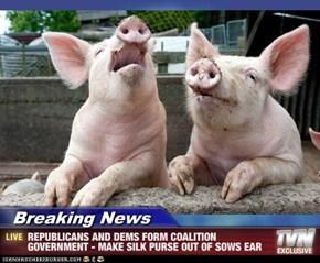 Breaking News - REPUBLICANS AND DEMS FORM COALITION GOVERNMENT - MAKE SILK PURSE OUT OF SOWS EAR
