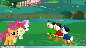 Pony vs Ducks