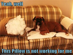 Yeah, well  This Pillow is not working for me
