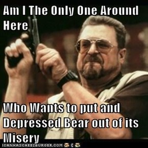 Am I The Only One Around Here   Who Wants to put and Depressed Bear out of its Misery