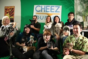 "Today Was ""Bring Your Dog Friday"" at Cheezburger HQ!"