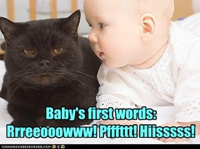 Baby's first words:  Rrreeooowww! Pfffttt! Hiisssss!