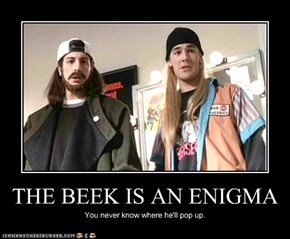 THE BEEK IS AN ENIGMA