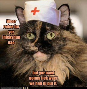 Ben Dover? Dr. Tiny Cat Will See Yoo.