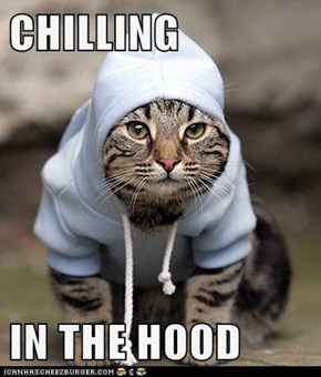 CHILLING  IN THE HOOD