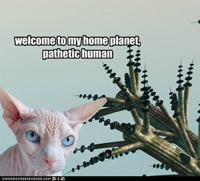 welcome to my home planet, pathetic human
