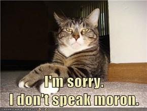 I'm sorry.                            I don't speak moron.